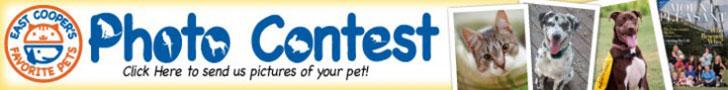 East Cooper Pet Photo Contest