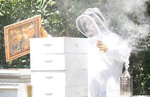 Allan Perry (AP) Hazel in his beekeeper suit