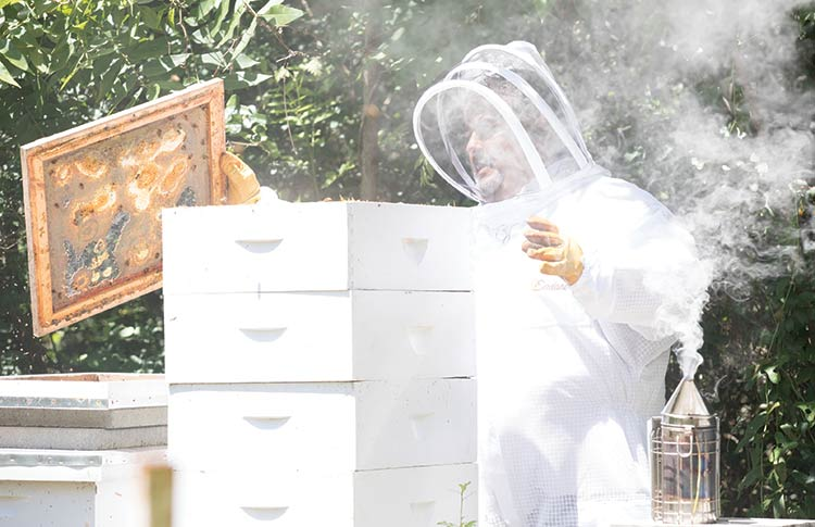 Allan Perry (AP) Hazel in his beekeeper suit