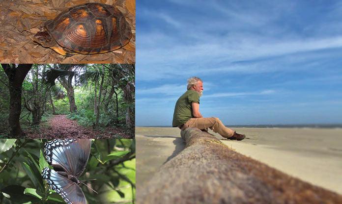 Sullivan's Island's Nature Boardwalk photos